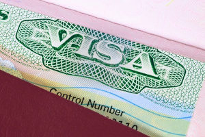 H-1B visa that is being used by an immigrant worker
